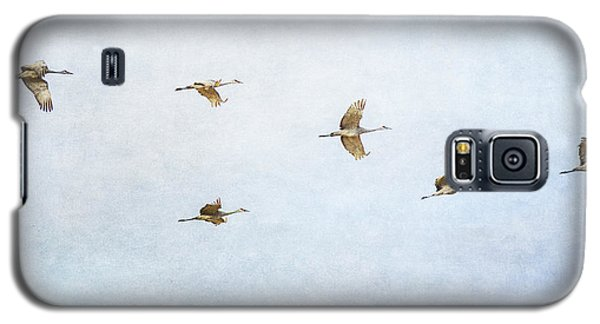 Spring Migration 4 - Textured Galaxy S5 Case