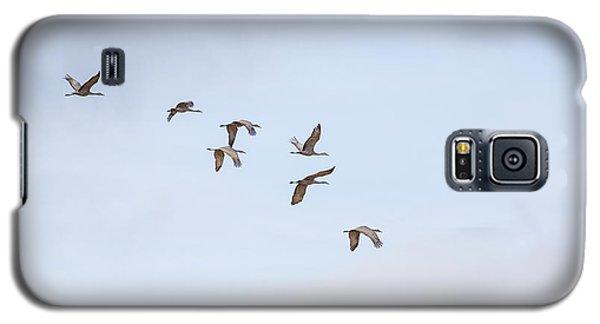 Spring Migration Galaxy S5 Case