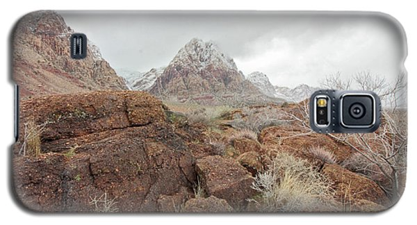 Spring Mountain Ranch Galaxy S5 Case