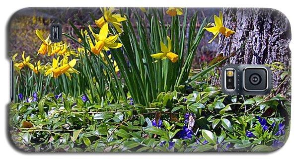 Spring Galaxy S5 Case
