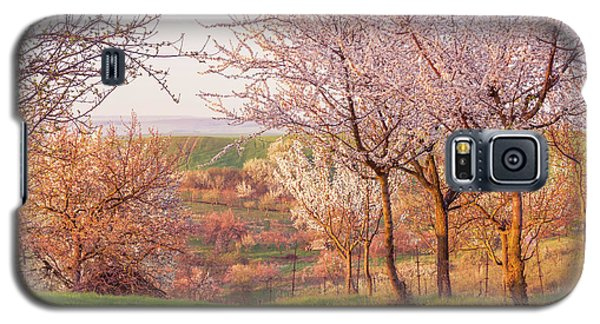 Galaxy S5 Case featuring the photograph Spring Orchard With Morring Sun by Jenny Rainbow