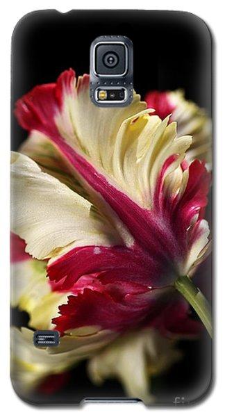 Spring Parrot Tulip Galaxy S5 Case