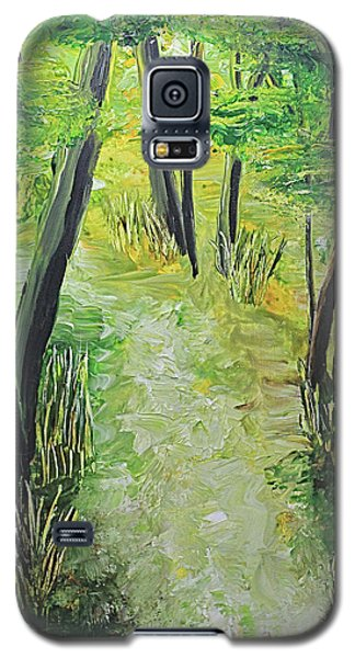 Spring Path Galaxy S5 Case