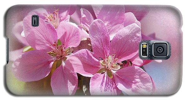 Galaxy S5 Case featuring the photograph Spring Cherry Blossoms by Elaine Manley