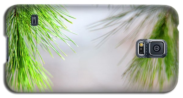 Galaxy S5 Case featuring the photograph Spring Pine Abstract by Christina Rollo