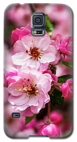 Spring Pink Galaxy S5 Case