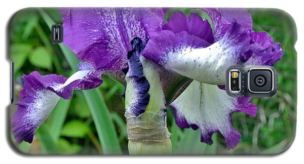 Galaxy S5 Case featuring the photograph Spring Purple Iris by Marsha Heiken
