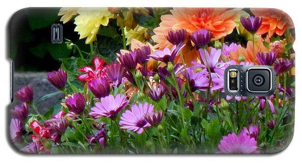 Spring Riot Galaxy S5 Case