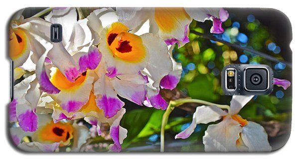 Spring Show 15 Brazilian Orchid Galaxy S5 Case