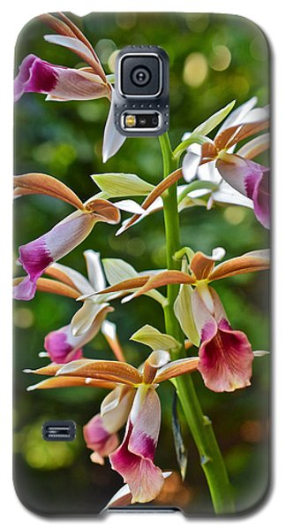 Spring Show 15 Nun's Orchid 1 Galaxy S5 Case
