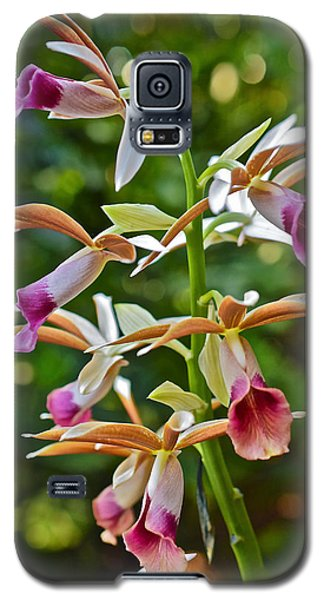 Spring Show 15 Nun's Orchid 1 Galaxy S5 Case