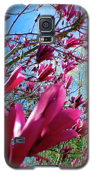 Spring Sky Galaxy S5 Case