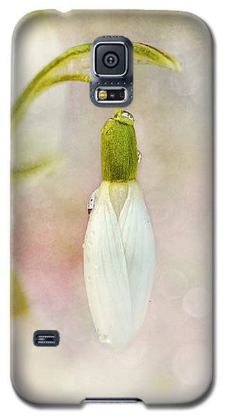 Spring Snowdrops And Bokeh Galaxy S5 Case by Peggy Collins