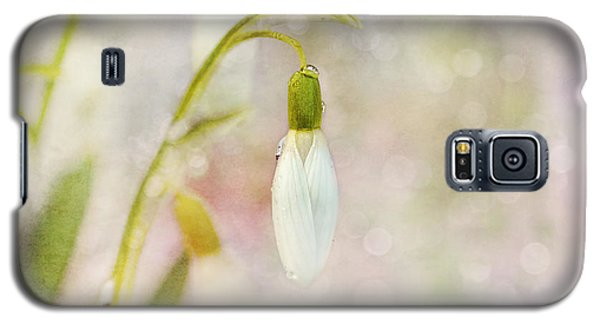 Spring Snowdrops And Bokeh Galaxy S5 Case