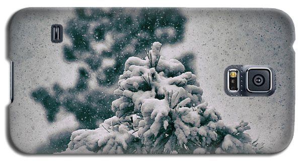 Spring Snowstorm On The Treetops Galaxy S5 Case