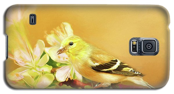 Galaxy S5 Case featuring the photograph Spring Song Bird by Darren Fisher