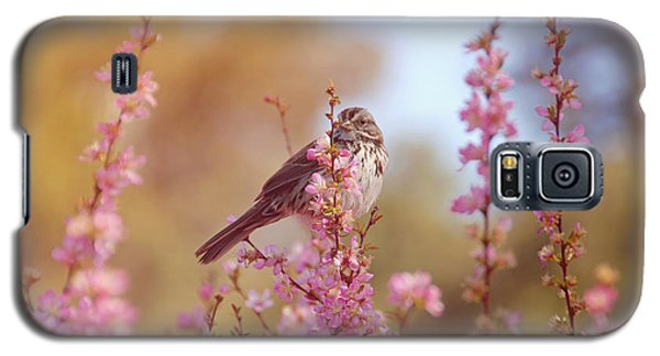 Galaxy S5 Case featuring the photograph Spring Sparrow by Lynn Bauer