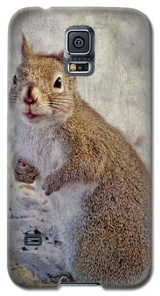 Spring Squirrel Galaxy S5 Case
