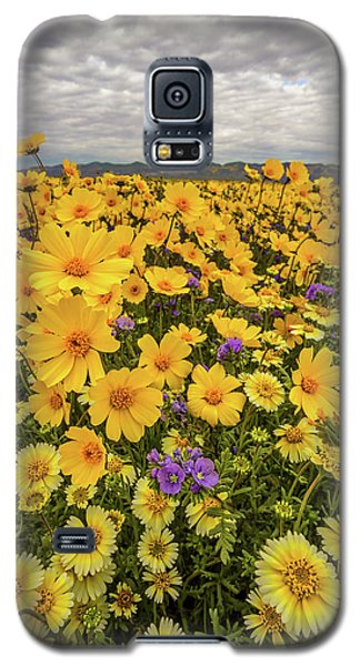 Galaxy S5 Case featuring the photograph Spring Super Bloom by Peter Tellone