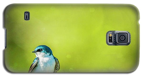 Spring Swallow Galaxy S5 Case