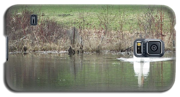 Galaxy S5 Case featuring the photograph Spring Swan by Wendy Shoults