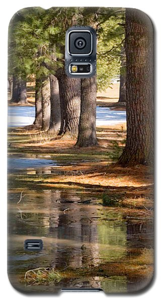 Spring Thaw  Galaxy S5 Case