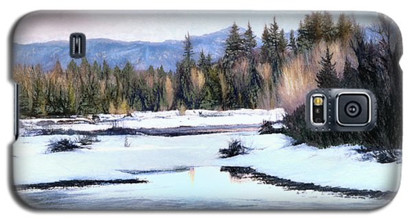 Spring Thaw Galaxy S5 Case by Jim Hill
