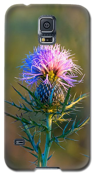 Spring Thistle Galaxy S5 Case