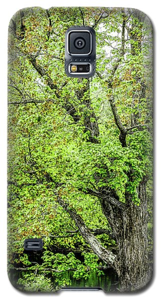 Spring Time By The River Galaxy S5 Case