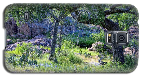Spring Time In Texas Galaxy S5 Case by Linda Phelps