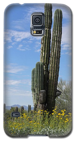 Spring Time In Tucson Galaxy S5 Case