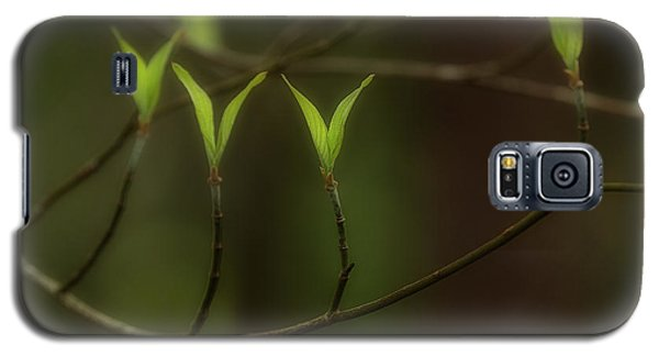 Galaxy S5 Case featuring the photograph Spring Time by Mike Eingle