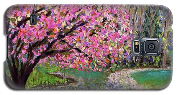 Spring Tree At New Pond Farm Galaxy S5 Case