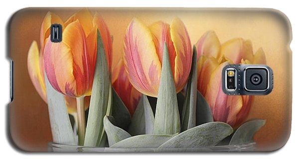 Spring Tulips Galaxy S5 Case by Kathleen Holley
