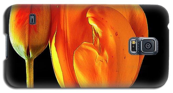 Spring Tulips V Galaxy S5 Case