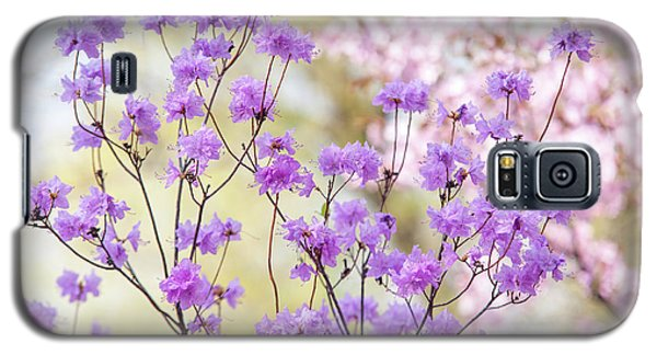 Galaxy S5 Case featuring the photograph Spring Watercolors. Blooming Rhododendron  by Jenny Rainbow