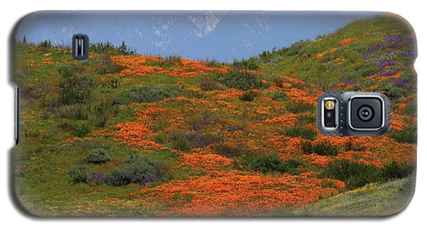 Spring Wildflower Display At Diamond Lake In California Galaxy S5 Case