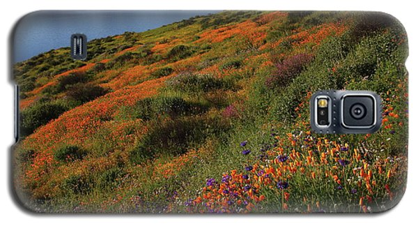 Spring Wildflower Season At Diamond Lake In California Galaxy S5 Case