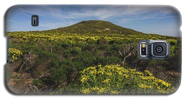 Spring Wildflowers Blooming In Malibu Galaxy S5 Case