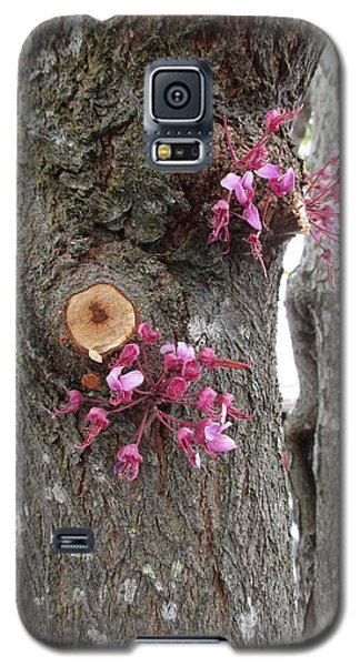 Galaxy S5 Case featuring the photograph Spring Will Not Be Denied by Marie Neder