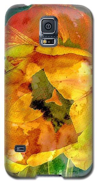 Spring Xx Galaxy S5 Case