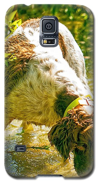 Springer Spaniel Field Galaxy S5 Case by Constantine Gregory