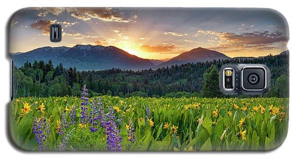 Spring's Delight Galaxy S5 Case