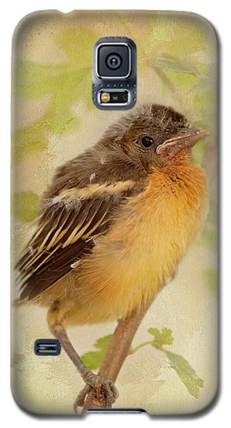 Spring's Sweet Song Galaxy S5 Case