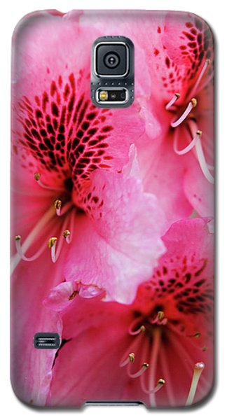 Springtime Azalea Galaxy S5 Case