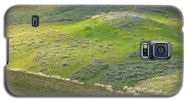 Galaxy S5 Case featuring the photograph Springtime Graze.. by Al  Swasey