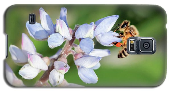 Springtime I Galaxy S5 Case