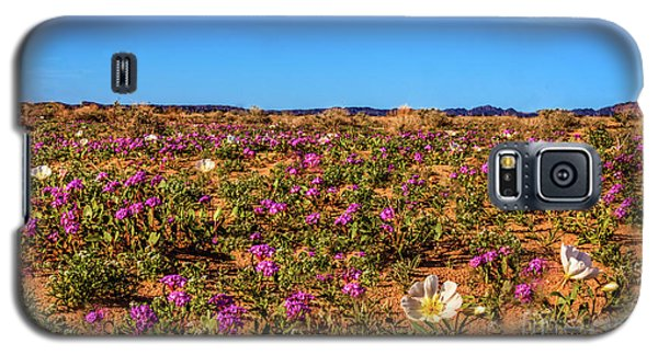 Galaxy S5 Case featuring the photograph Springtime In The Sonoran Desert by Robert Bales