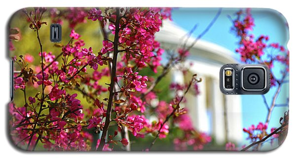 Galaxy S5 Case featuring the photograph Springtime Vibe by Mitch Cat