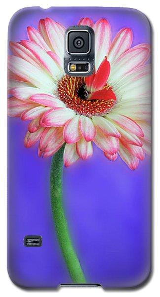 Sprouting Dahlia Galaxy S5 Case
